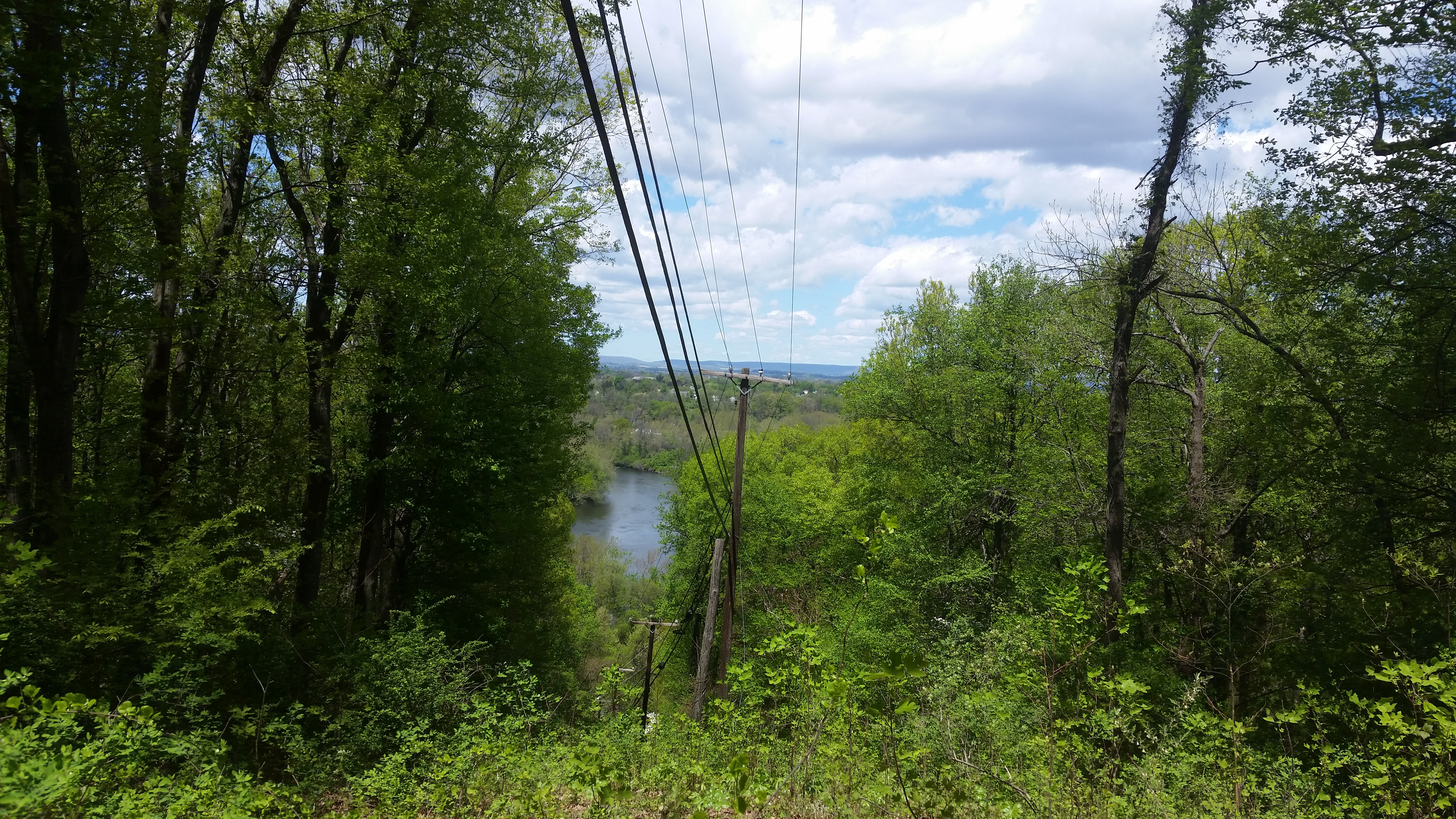 View of river and valley through trees.