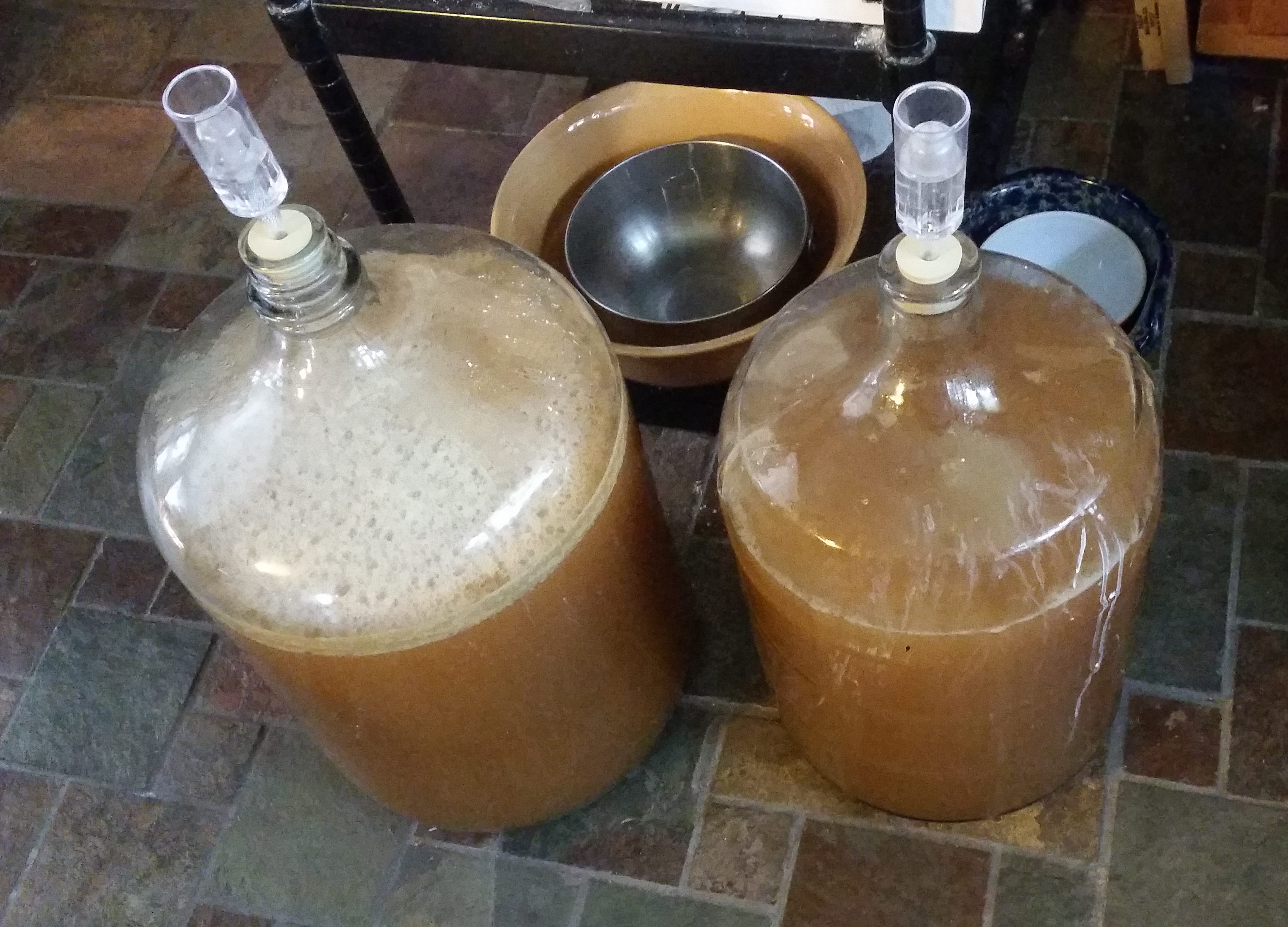 Homebrew beer ferments in jugs.