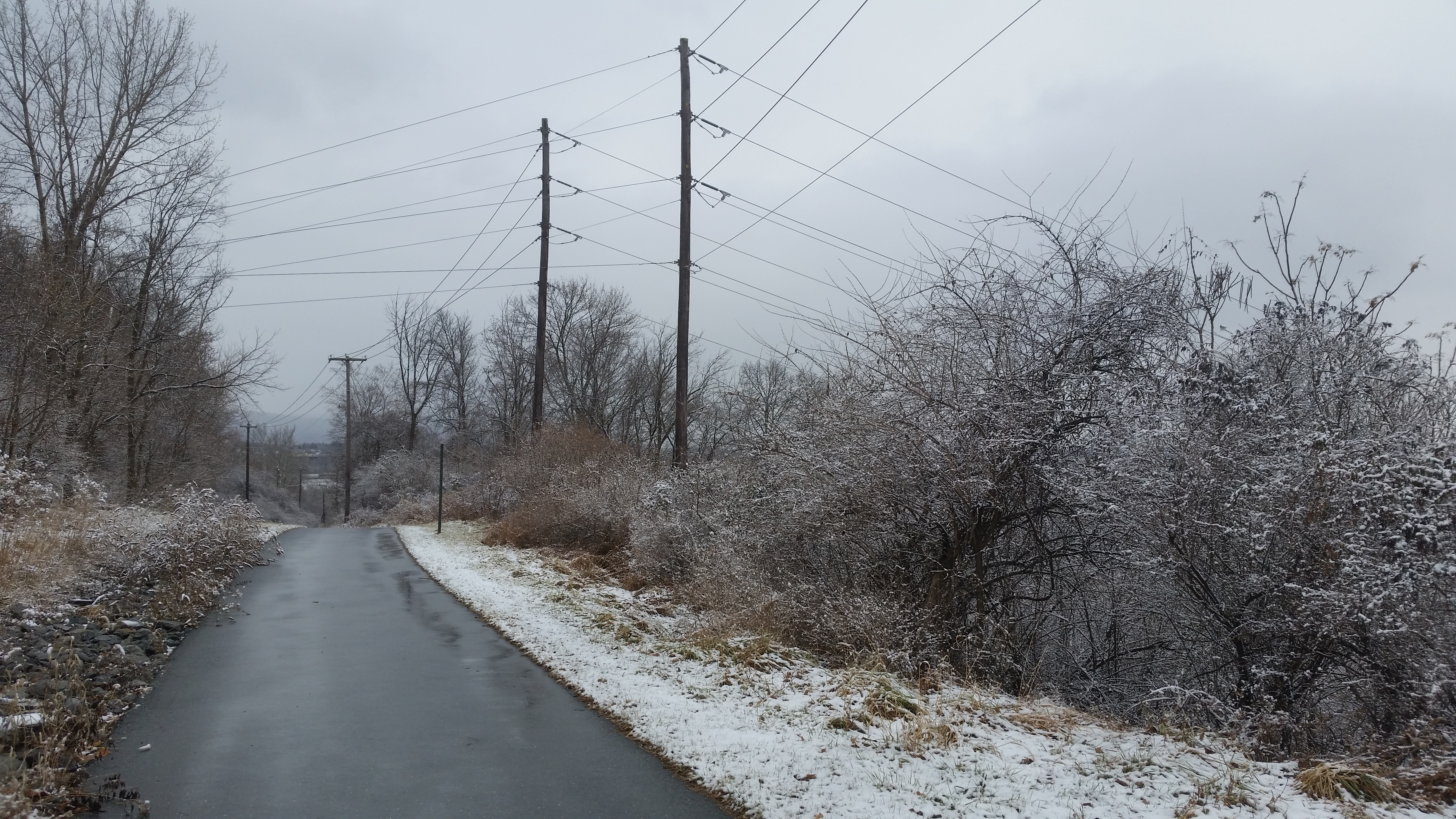 bike path, power lines and winter woods
