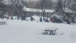 people doing yoga outside in snow
