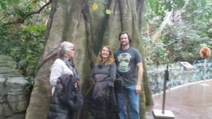 people stand in front of a tree