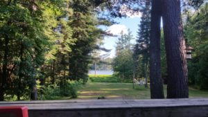 adirondack trees and lake
