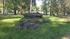 a boulder in a field