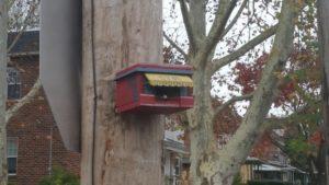 syb's deli birdhouse